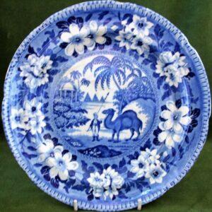 Dromedary Plate