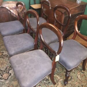 Mahogany balloon back chairs Antique Chairs